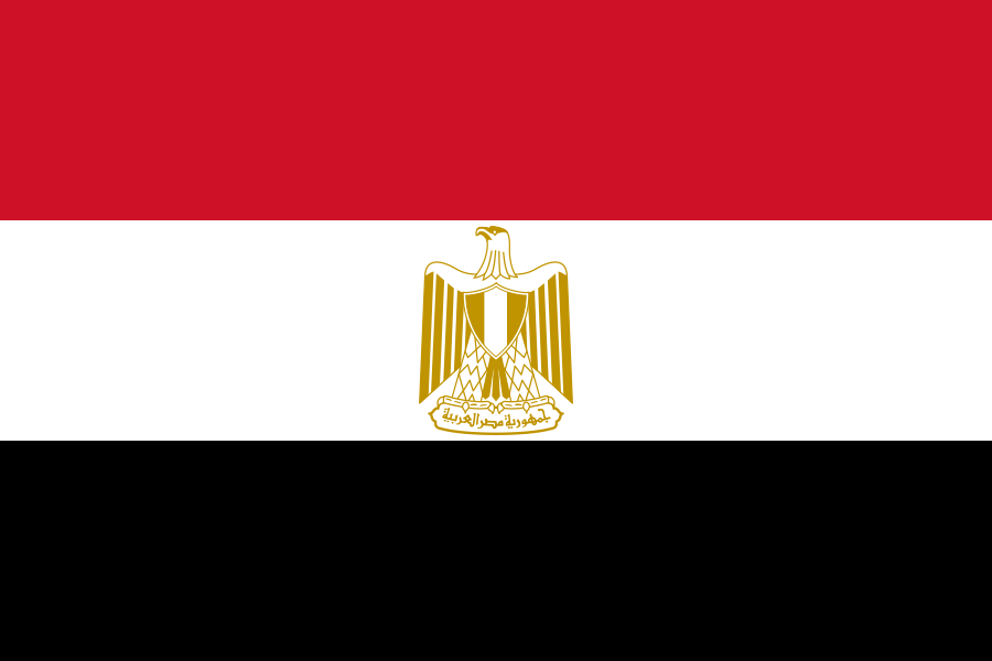 State of Privacy Egypt | Privacy International