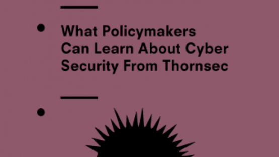 What policymakers can learn about cyber security from Thornsec