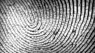 EU to announce fingerprinting for all visitors