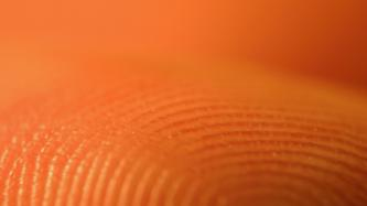 Alliance appeals to Council of Europe to address biometrics privacy